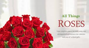 send roses send roses for valentines day flower banner 1 s day