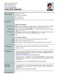 resume form download resume format resume format download pdf