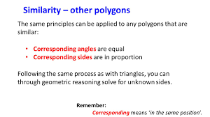 similar triangles and other polygons ppt video online download