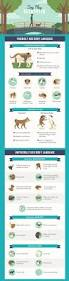 best 20 dog toilet ideas on pinterest dog potty dog backyard