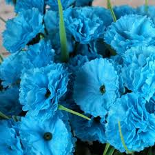 252 carnation flowers turquoise efavormart