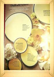 great paint color for any room optimistic yellow sunbeam