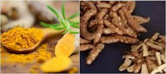 cuisine curcuma what is the difference between yellow turmeric turmeric