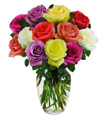 colored roses 12 colorful roses farm fresh avas flowers