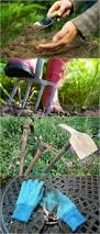 gardening ideas 11323 best garden ideas u0026 projects images on pinterest gardening