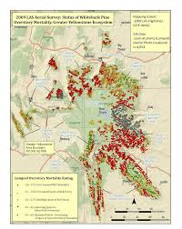 Red Lodge Montana Map by Using The Landscape Assessment System Las To Assess Mountain