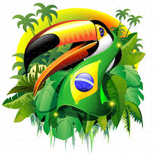 Brazil Flag Image Toco Toucan With Brazil Flag By Bluedarkat Graphicriver