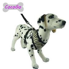 Four Paws Comfort Control Harness Cheap Comfy Control Harness Find Comfy Control Harness Deals On