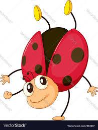 cartoon ladybird royalty free vector image vectorstock