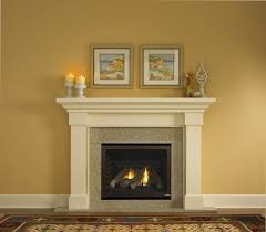 Fireplace Distributors Inc by 51 Best Fireplaces U0026 Inserts Images On Pinterest Fireplace