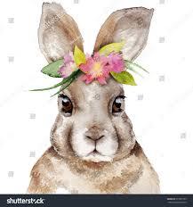100 springtime wreaths watercolor rabbit portrait flower