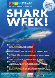 shark week u2013 tons of fun for everyone stinapa bonaire