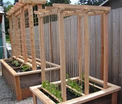 how to reuse old mason jar lids trellis ideas raised bed and