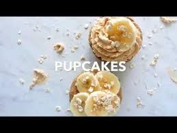 pupcakes birthday cake for dogs recipe birthday cakes dog