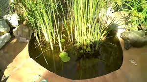 backyard fish pond with waterfall youtube