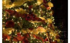 11th annual schenectady festival of trees sunday dec 3 2017