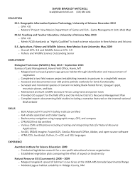 Resume With References Available Upon Request D Brad Mitchell Gis