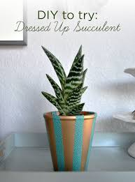 diy to try planter for the indecisive bubbly design co