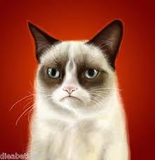Tardar Sauce Meme - grumpy cat internet meme tardar sauce portrait reddit tumblr art