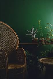 best 25 dark green rooms ideas on pinterest green velvet dark