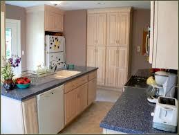 Portable Kitchen Islands Ikea Kitchen Under Sink Organizer Ikea Ikea Portable Kitchen Kitchen