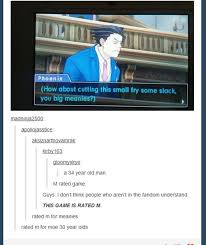 Phoenix Wright Meme - image result for ace attorney phoenix wright memes ace attorney