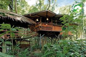 Treehouse Europe - 8 incredible treehouses around the world rough guides rough guides