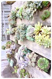 How To Make Vertical Garden Wall - world u0027s best 111 pallet garden ideas to collect homesthetics