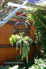 decoration jardin marocain les 20 meilleures idées de la catégorie cages à oiseaux sur