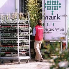 plant delivery wholesale nursery nurseries in melbourne sydney brisbane