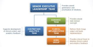 Organizational Best Organizational Structure For Healthcare Analytics