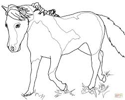 miniature horse mare coloring page free printable coloring pages