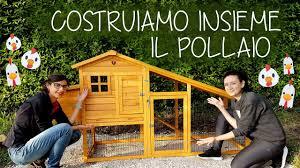 Come Costruire Un Pollaio In Legno by Pollaio In Legno Per Galline Costruiamolo Insieme Ilverdemondo