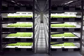 spread u0027s robot farm will open soon business insider