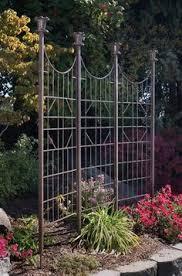 Trellis As Privacy Screen Metal Trellis Evolution Iron Projects Gardens Garden