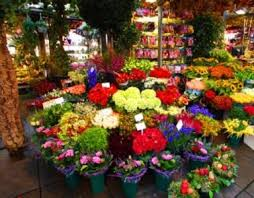 florist nc designer s choice the freshest market flowers arranged in