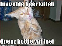 Invisible Cat Meme - epic invisible cat wins sharenator