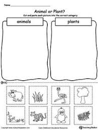 life cycle of a plant booklet free can make it into a poster