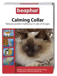 calming collar beaphar calming collar for cats amazon co uk pet supplies