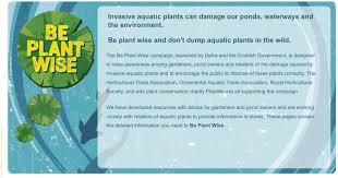 be plant wise sedgley road aquarium
