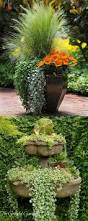 Outdoor Planter Ideas by Best 25 Container Gardening Ideas On Pinterest Growing