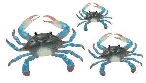 amazon com regal art u0026gift blue crab wall decor set of 3