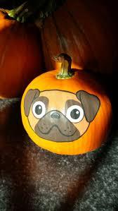 pug dog pumpkin painted by brandi johner pumpkin paint ideas