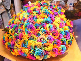 multicolored roses how to make rainbow roses a step by step guide lgbt news