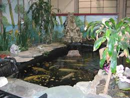 indoor pond kits indoor koi pond photo shared by benedetta18