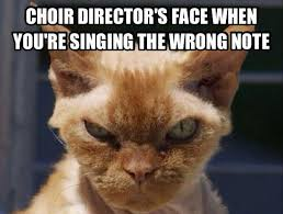 Mean Cat Memes - mean cat face chorus angelicus at our lady of the angels