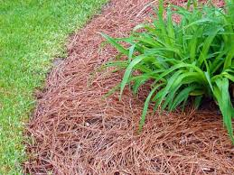 Best Type Of Mulch For Vegetable Garden - mulching landscape beds faqs msu extension