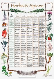 herb chart the creative palate culinary herb n spice chart
