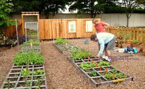 vegetable garden design layout garden design garden design courses small vegetable garden