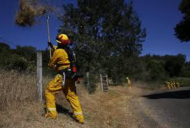 Wildfire Near Markleeville Ca by California Has 66 Million Dead Trees But Nowhere To Put The Wood